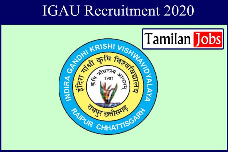 IGAU Recruitment 2020 Out – Candidates Can Apply For Driver & Peon Jobs