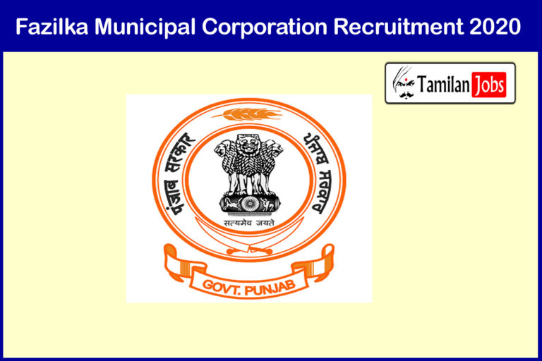 Fazilka Municipal Corporation Recruitment 2020 Out – Apply 260 Computer Operator Jobs